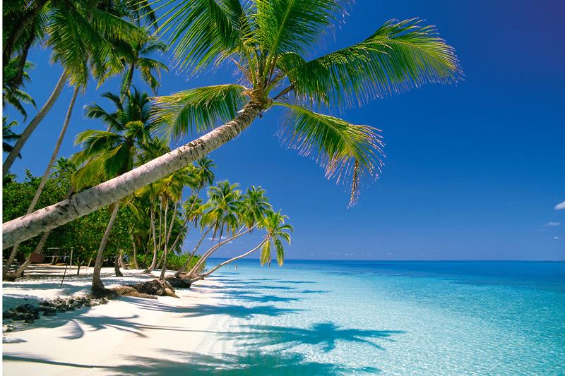 Maldive, tornano i colori - Dove Viaggi