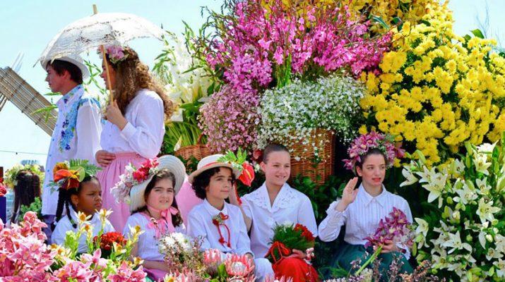 Foto Primavera a Madeira