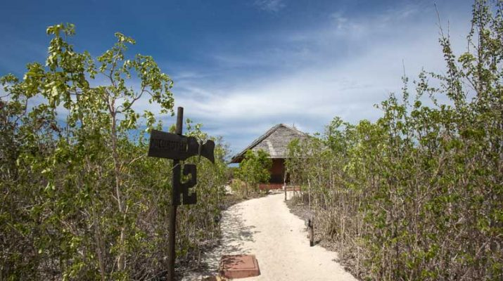 Foto Mozambico: blu safari