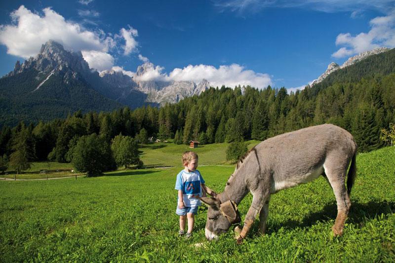 Trentino: la vacanze rurale