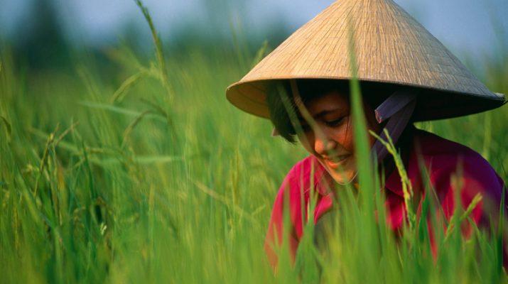 Foto L'ultimo Vietnam