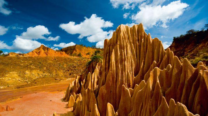 Foto Madagascar, il fascino del selvaggio