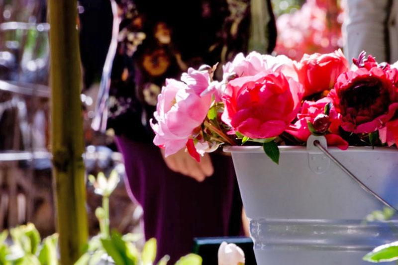 Primavera in viaggio: Italia in fiore