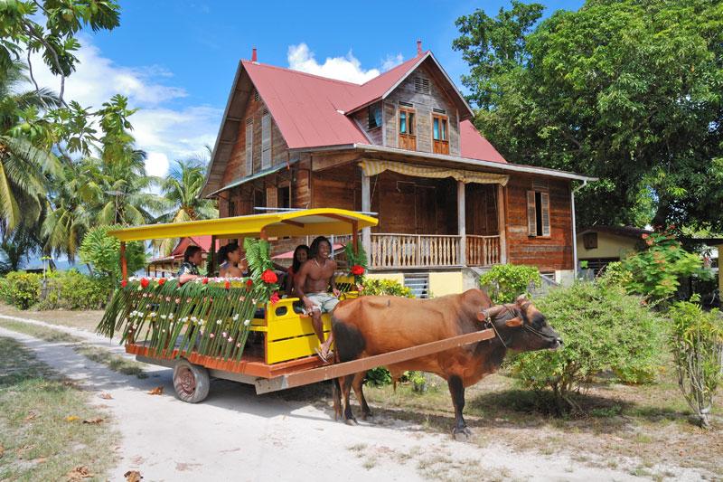 Seychelles, sogno su misura