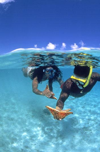 Un tuffo nelle Isole Vergini Americane