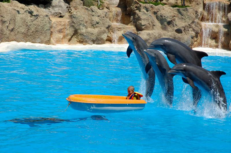 Tenerife: paradiso per famiglie
