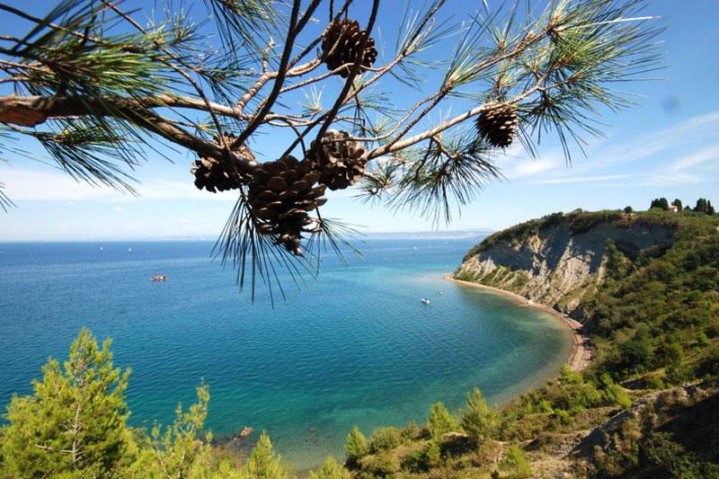 Slovenia sul mare: da Pirano a Portorose