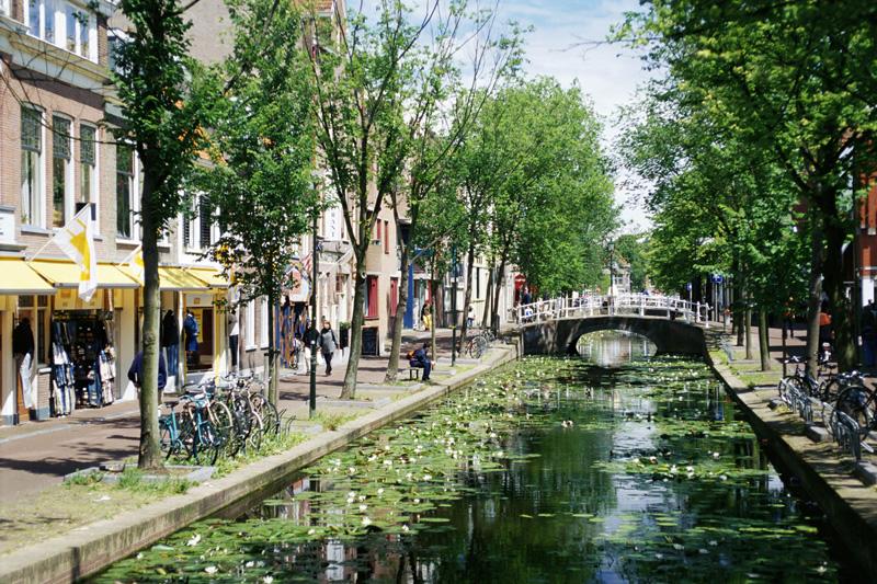 Da Amsterdam alle città storiche: l'Olanda, tra passato e futuro