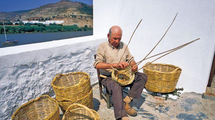 Foto Andalusia, sulla via dello sherry