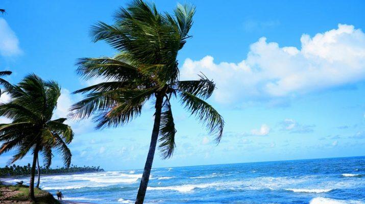 Foto Salvador de Bahia: fra oceano e Barocco