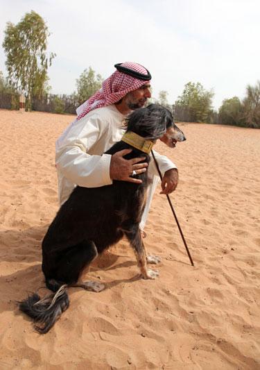 Emirati Arabi: l'Abu Dhabi che non ti aspetti