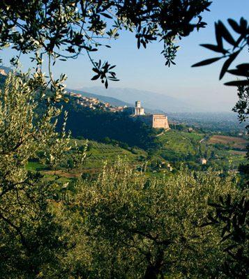 Foto Frantoi Aperti, sapore d'Umbria