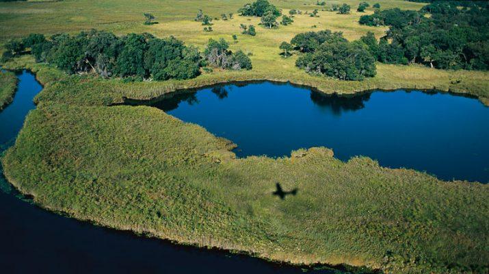 Foto Botswana e Tanzania: safari sull?acqua