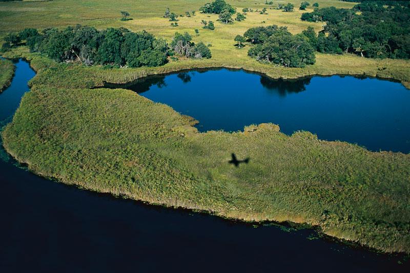 Botswana e Tanzania: safari sull?acqua