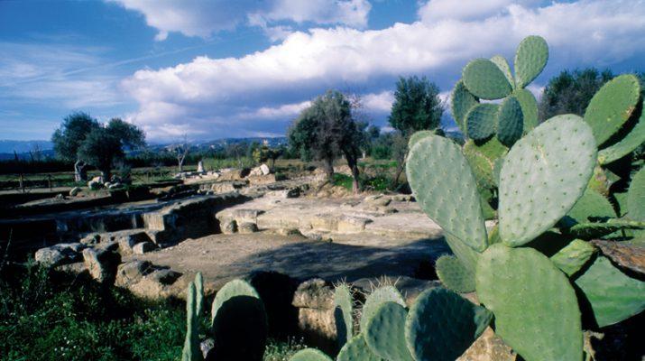 Foto Lungo la costa ionica sulle tracce della Magna Grecia