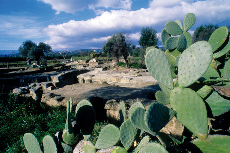 Lungo la costa ionica sulle tracce della Magna Grecia