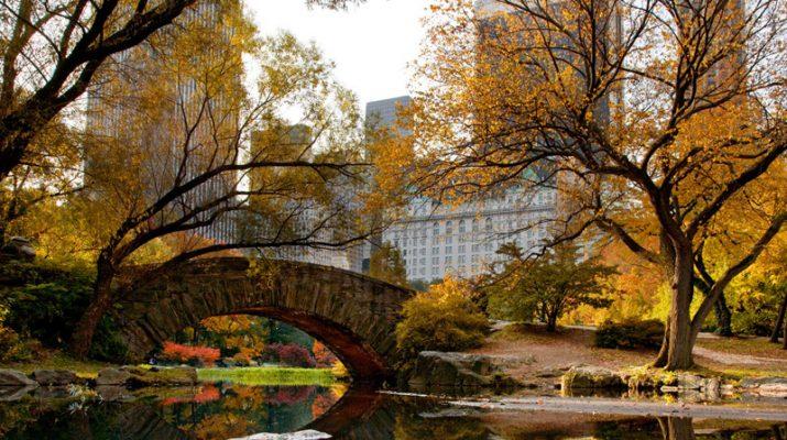 Foto Autunno (e foliage) a New York