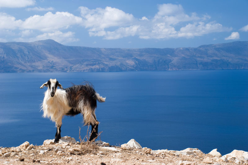 Creta, al mare con  Teseo e Arianna
