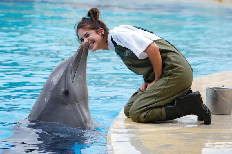Primo novembre a Riccione, per giocare con i delfini