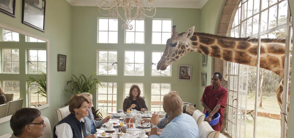giraffe-manor-12-kO3H-U430001643990862r2G-960x451@Viaggi-Web
