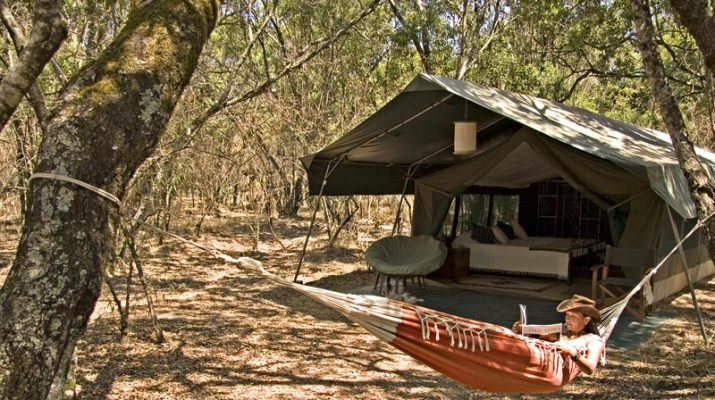 Foto Kenya: safari a Tsavo e nel Masai Mara