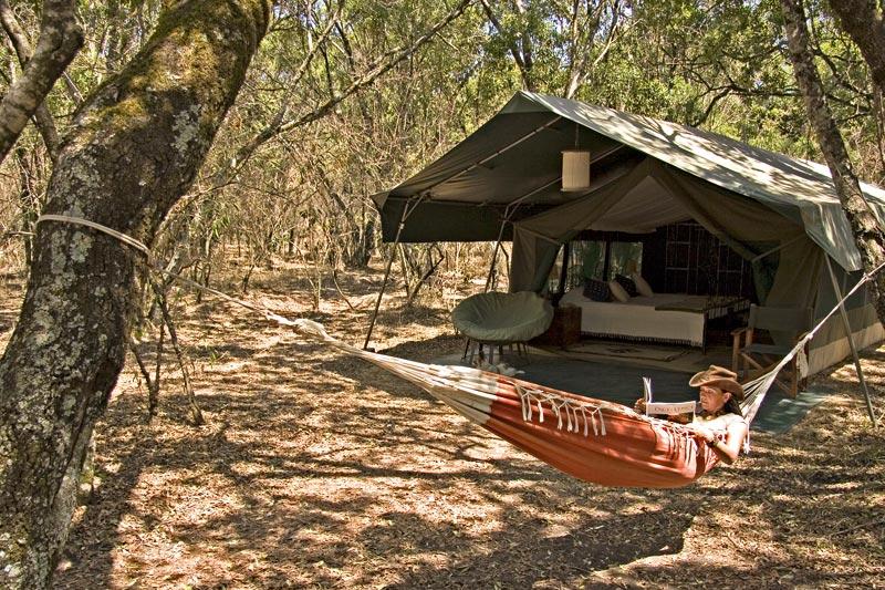 Kenya: safari a Tsavo e nel Masai Mara