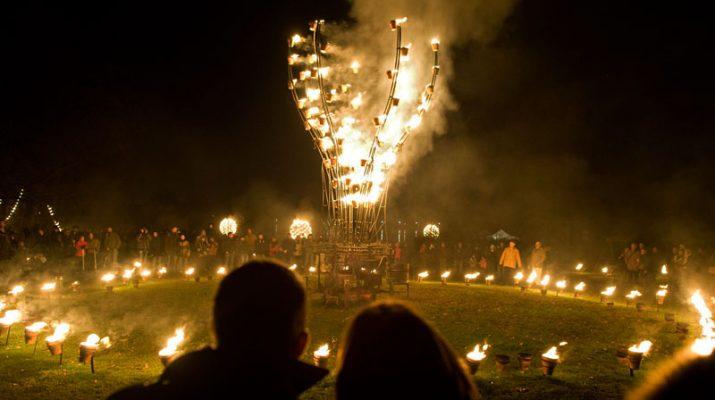 Foto Ponte dell'Immacolata, tra le mille luci di Lione vestita a festa