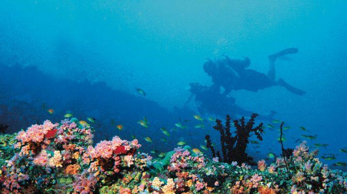 Foto Maldive in barca, a fior di reef
