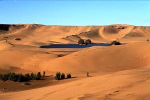 Marocco del Sud: tour tra deserto e montagne
