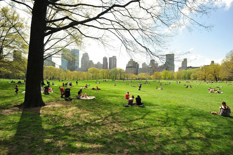 La primavera di New York