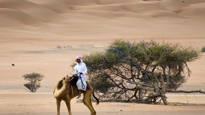 Foto La rotta delle spezie: da Nizwa alle dune di sabbia di Wahiba