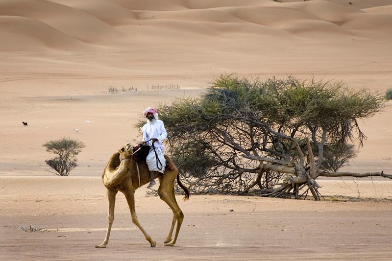 La rotta delle spezie: da Nizwa alle dune di sabbia di Wahiba