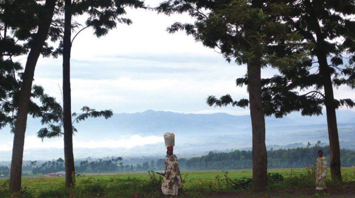 Foto Ruanda e Tanzania: in volo