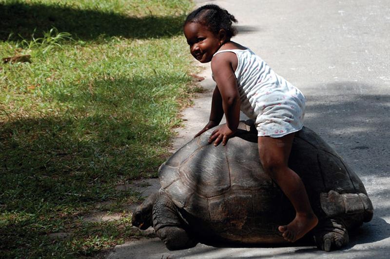 Seychelles a piedi scalzi