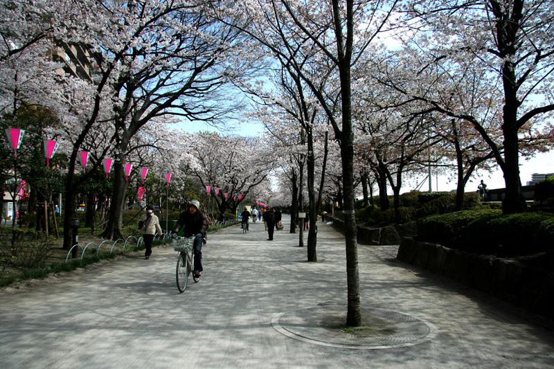 Tokyo, benessere e tradizione