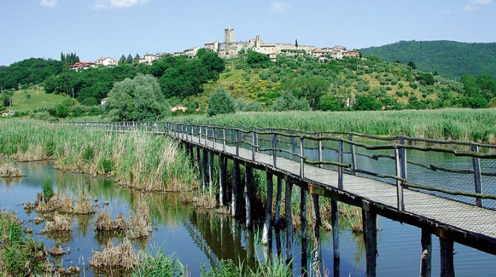 Foto Trasimeno, in bici tra vigne e castelli