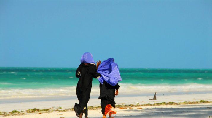 Foto Zanzibar: spiagge bianche e safari