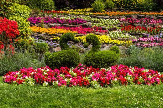 Foto Primavera a Villa Carlotta