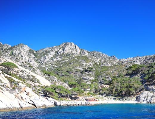 Foto Montecristo: l'isola salvata