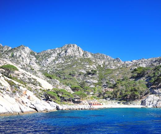 Montecristo: l'isola salvata