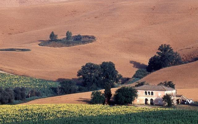 Foto Expo rurale: la campagna invade Firenze