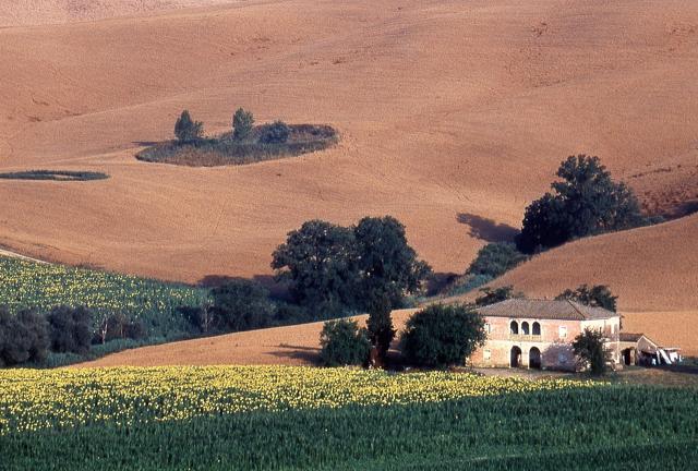 Expo rurale: la campagna invade Firenze