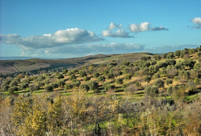 Trekking, archeologia, cucina: Sardegna d'inverno a sorpresa