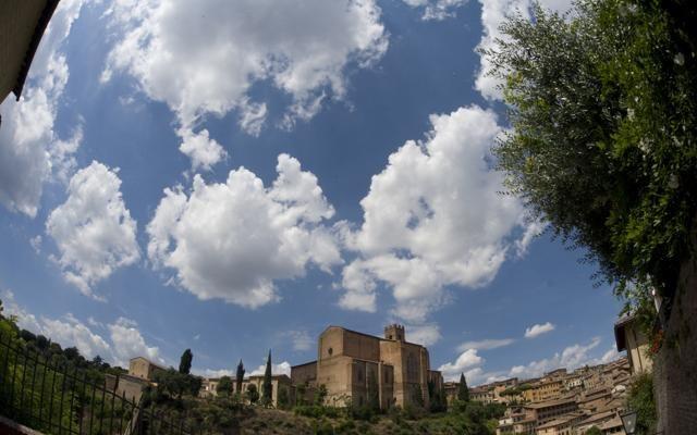 Foto InContrada:  i rioni di Siena  si raccontano