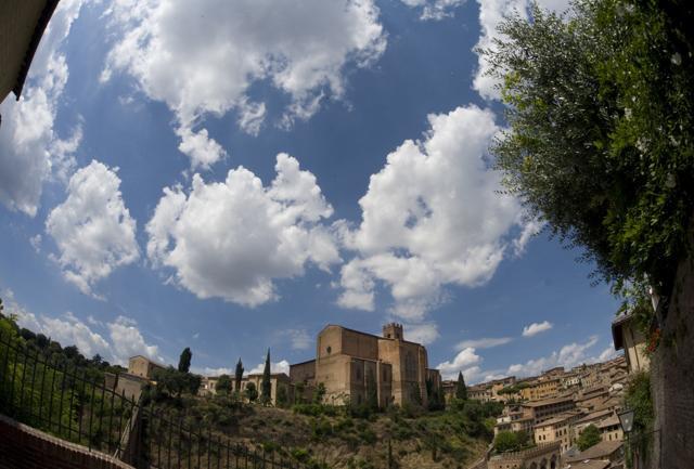InContrada:  i rioni di Siena  si raccontano