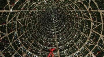 christmas-tree-ins_2395646k-k2FG-U43050242623147KSB-960×451@Viaggi-Web