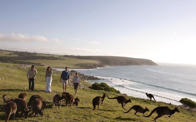 Foto Speciale Australia: la grande natura