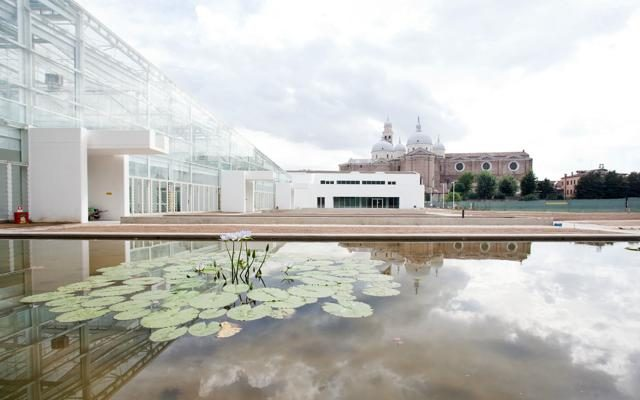 Foto Padova: Pasqua nel segno della scienza in fiore