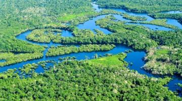 1-foresta-amazzonica-kJ6E-U4308091179386aCG-960×451@Viaggi-Web