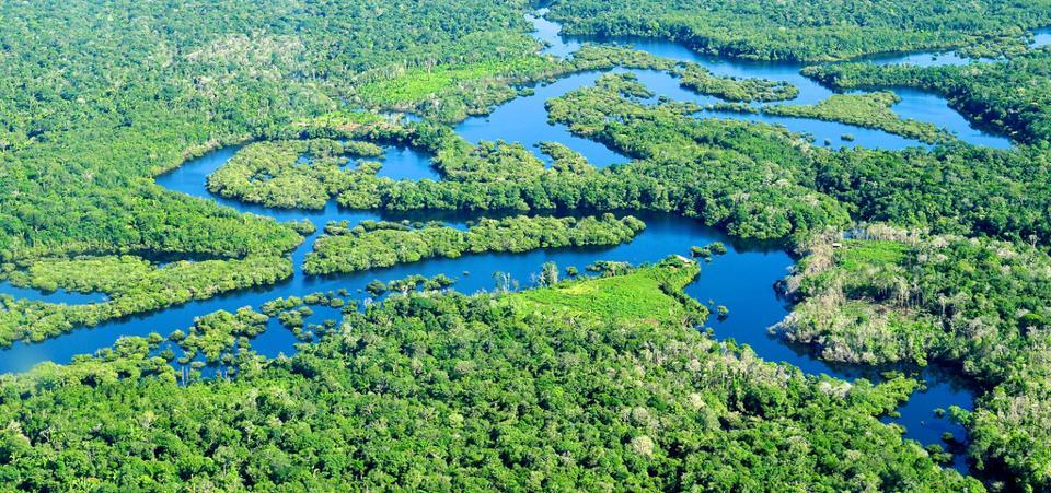 1-foresta-amazzonica-kJ6E-U4308091179386aCG-960x451@Viaggi-Web